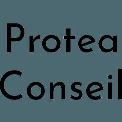 LOGO Protea Conseil